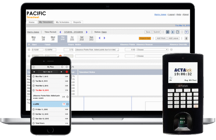 Time & Attendance Software